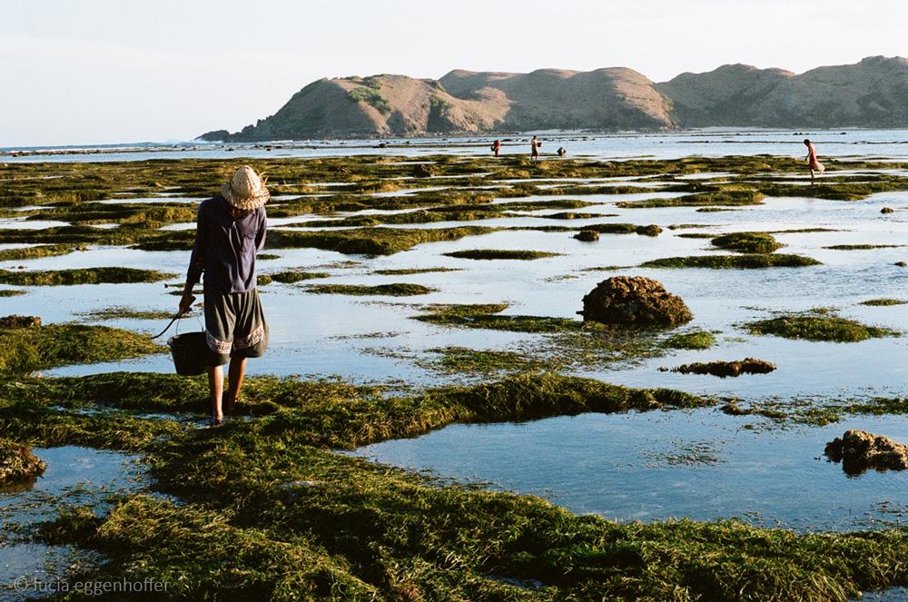 Lombok-island-indonesia-lucia-eggenhoffer-26