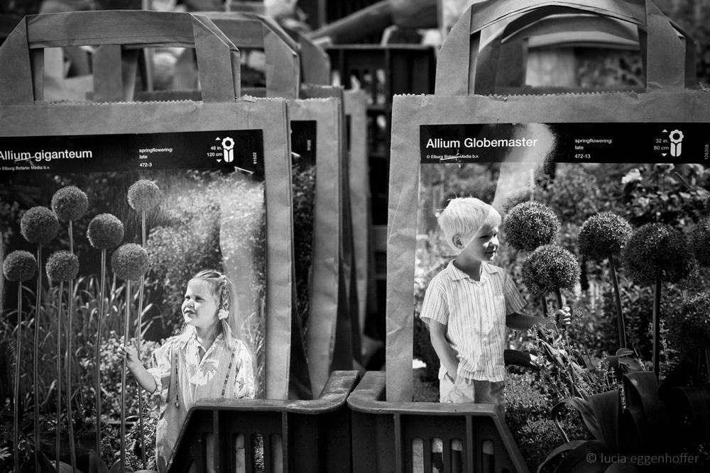 Amsterdam, Netherlands © lucia eggenhoffer