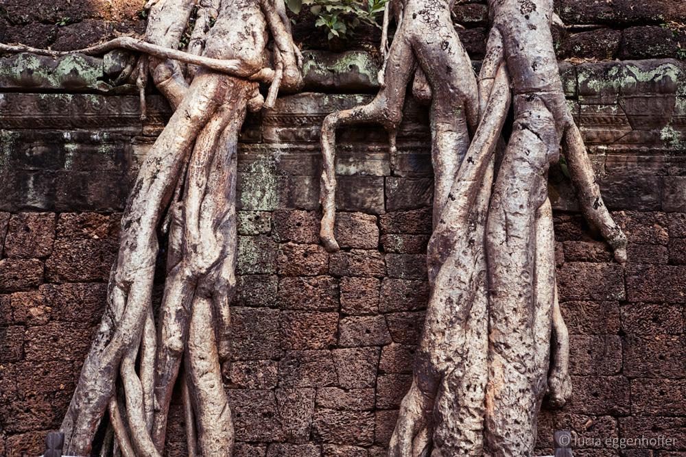 cambodia-lucia-eggenhoffer-011